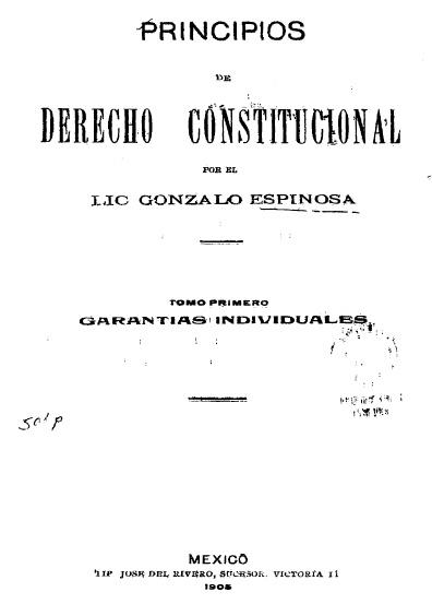 Principios de derecho constitucional, t. I