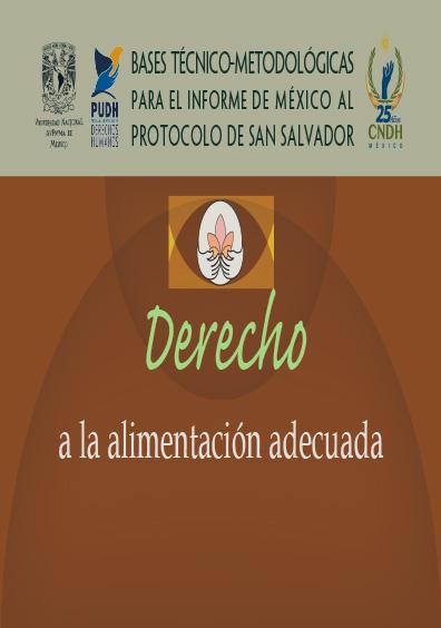 Bases técnico-metodológicas para el informe de México al Protocolo de San Salvador. Derecho a la alimentación adecuada. Colección de la CNDH