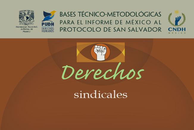 Bases técnico-metodológicas para el informe de México al protocolo de San Salvador. Derechos sindicales. Colección de la CNDH