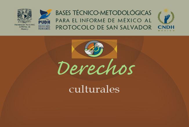 Bases técnico-metodológicas para el informe de México al protocolo de San Salvador. Derechos culturales. Colección de la CNDH