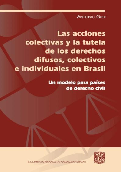 Las acciones colectivas y la tutela de los derechos difusos colectivos e individuales en Brasil