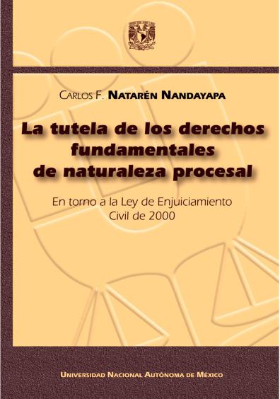 La tutela de los derechos fundamentales de naturaleza procesal. En torno a la Ley de Enjuiciamiento Civil de 2000