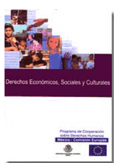 Memorias del Seminario Internacional sobre Derechos Económicos, Sociales y Culturales