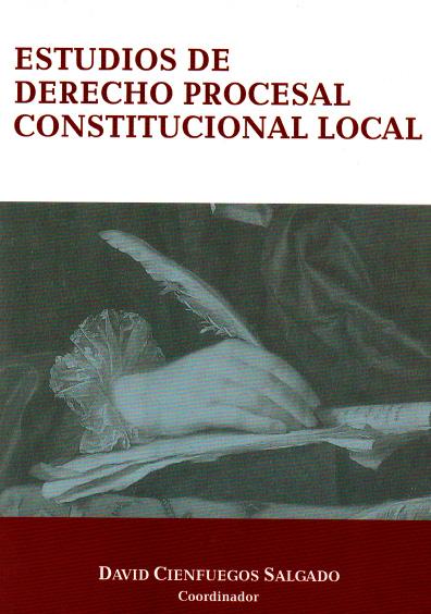 Estudios de derecho procesal constitucional local