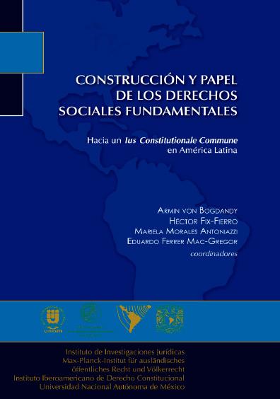 Construcción y papel de los derechos sociales fundamentales