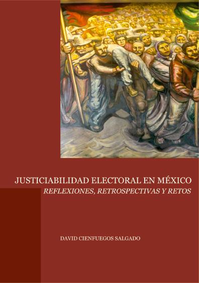 Derecho electoral mexicano. Una perspectiva judicial
