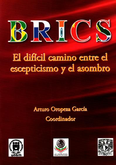 BRICS. El difícil camino entre el escepticismo y el asombro