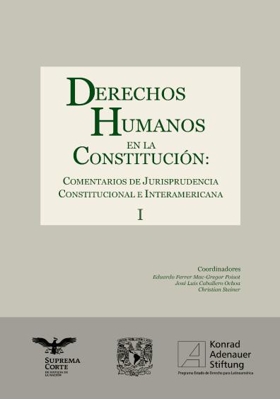 Derechos humanos en la Constitución. Comentarios de jurisprudencia constitucional e interamericana, t. I