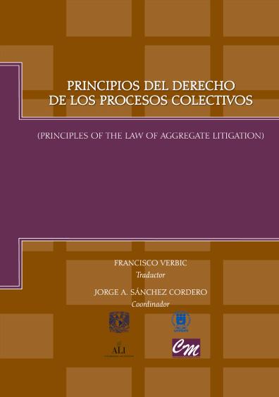 Principios del derecho de los procesos colectivos, 1a. reimp.