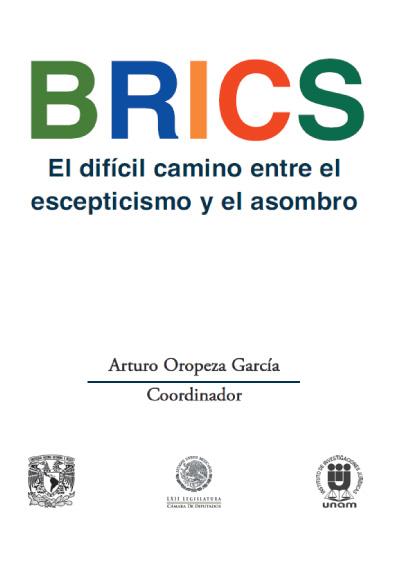 BRICS- El difícil camino entre el escepticismo y el asombro